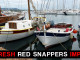 Red Snappers Importers
