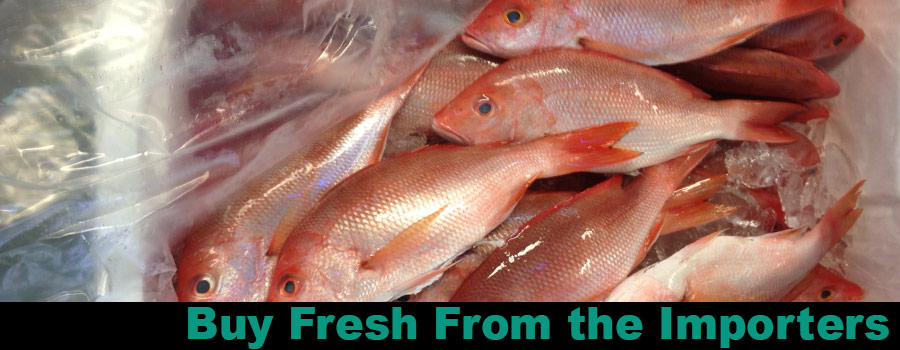 red-snappers-banner